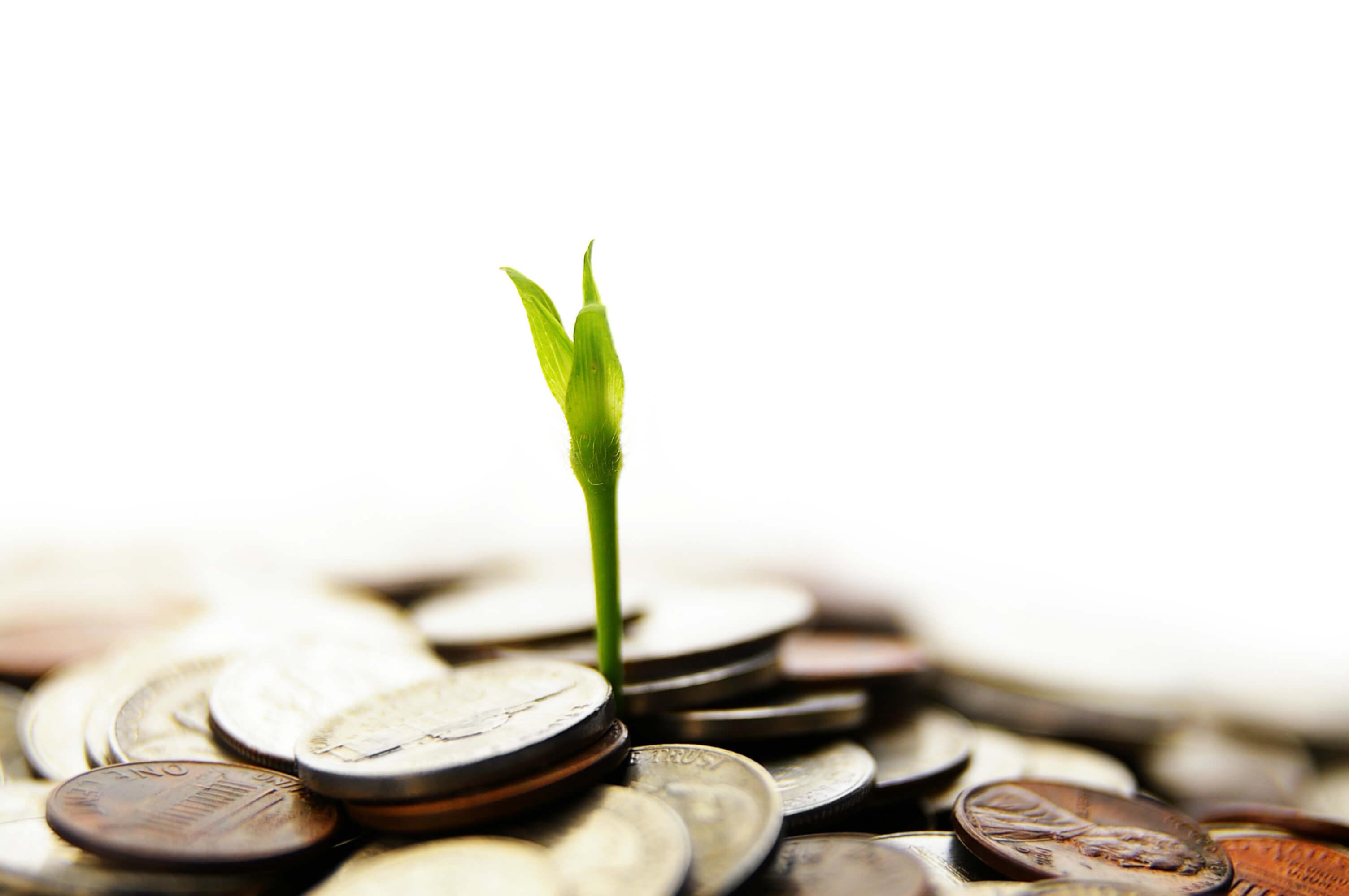 Gröna bolån är gynnsamma för låntagaren